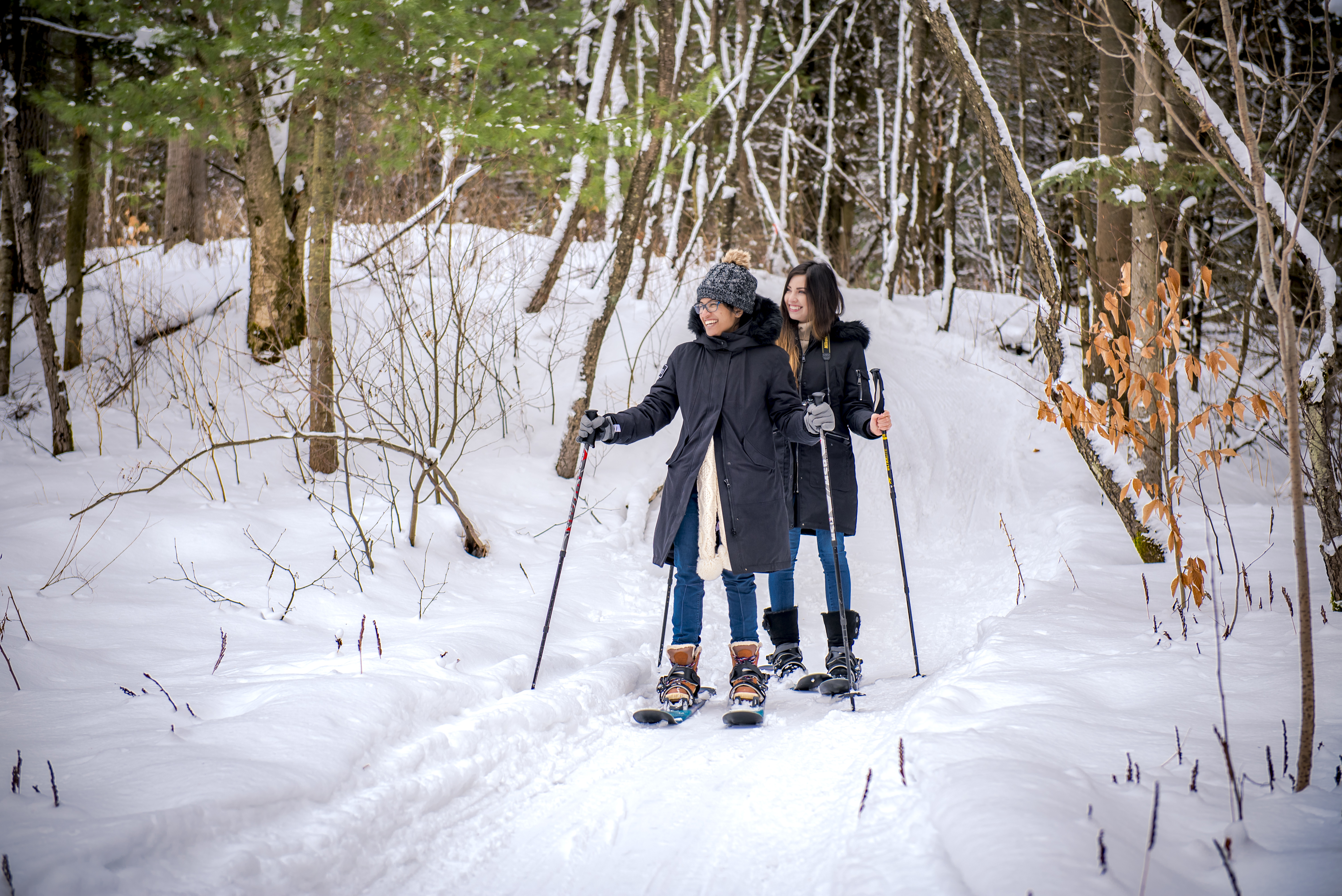 There's plenty to do in Muskoka during the wintertime, including backcountry skiing with companies like Livoutside.