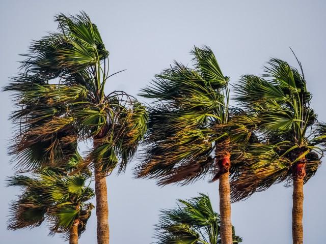 Hurricane Rosa could bring flash flooding to southwest U.S.