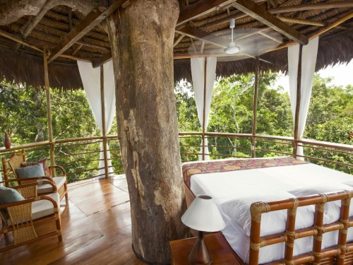 Look up!: Luxury treetop accommodations and experiences from around the world