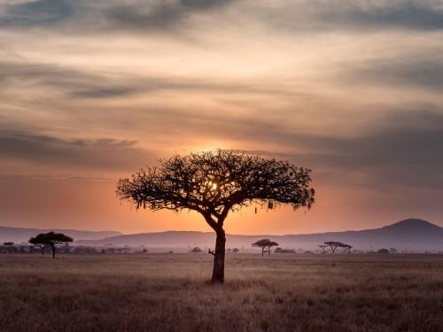 Tourcan's latest presentation highlights Kenya & South Africa