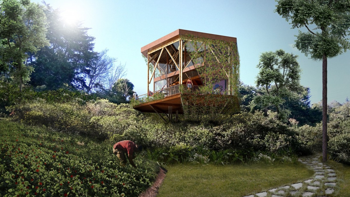 A boutique hotel is opening in a protected Colombian forest