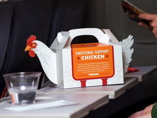 What the cluck: Popeye's 'emotional support chicken' takes flight