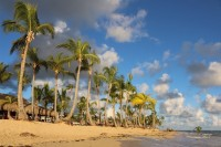Deaths in the Dominican: tour operators respond
