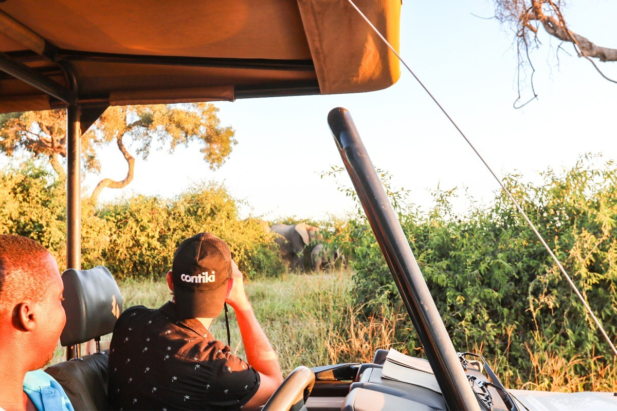 Contiki adds 3 new trips to Africa