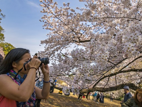 G Adventures & Tokyo Tourism team up for new campaign