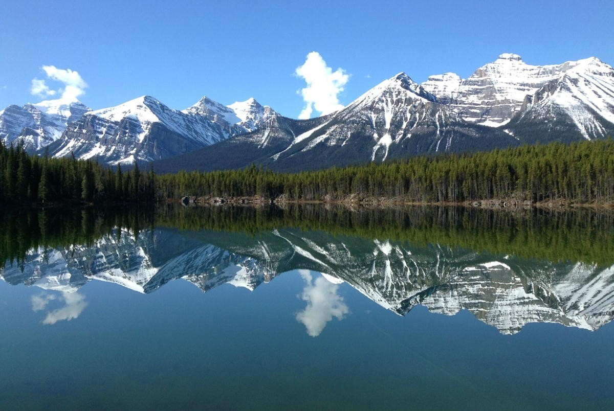 TDC expands domestic vacation options with Fresh Tracks Canada
