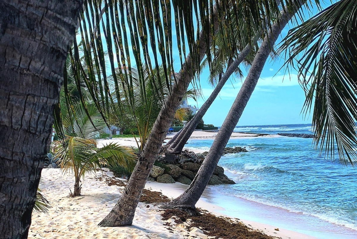 Barbados reopening to Canadians on July 12. What you need to know before you fly.