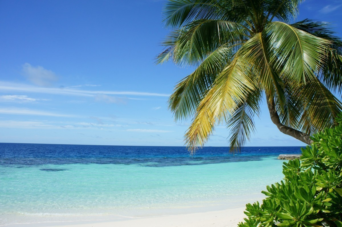 ACV sun packages to include free COVID-19 travel insurance