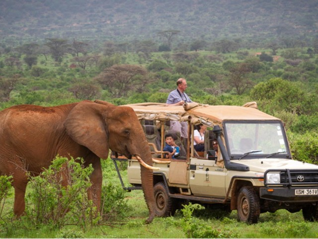 African Travel, Inc. unveils new luxury small group journeys